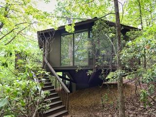 Modern Treetopper Luxury 2 Bedroom 2 Bath Cabin Close to all Amenities - Big Canoe vacation rentals