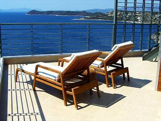 Gorgeous Eco Friendly Seaside Athens Villa - Schinias,marathon vacation rentals