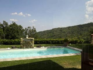 Villa Paolina - San Donato In Collina vacation rentals