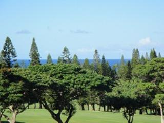 G16P7,8 - Kapalua vacation rentals