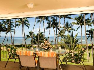 Hale Kai O'Kihei 2 Bedroom 316 - Kihei vacation rentals