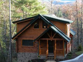 The Grandview - Gatlinburg vacation rentals