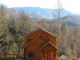 Daydreamer's Delight - Gatlinburg vacation rentals