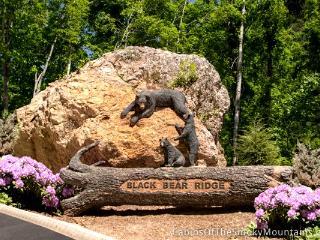 Splash Mountain - Sevier County vacation rentals