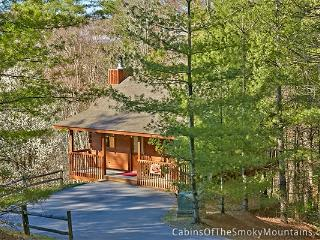 SECLUSION Cabin - Pigeon Forge vacation rentals