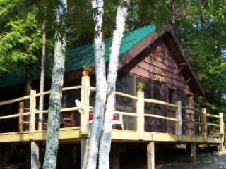 Authentic Adirondack Cabin-peace, quiet, nostalgia - Saranac Lake vacation rentals