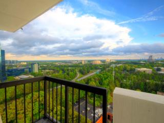 Amazing Penthouse,Stunning Views - Atlanta vacation rentals