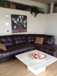 Living Room - La Jolla Shores Beach Rental - La Jolla - rentals