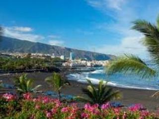 Puerto de La Cruz  Apartamento Playa Jardin - Puerto de la Cruz vacation rentals