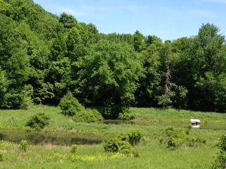 17 acre Hudson Valley mini farm, Rhinebeck area - Millerton vacation rentals