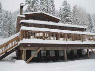 Family Friendly/Large Gatherings & Reunions - Durango vacation rentals