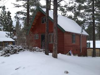 Cozy Cabin By The Lake, Family And Pet Friendly - Big Bear Lake vacation rentals