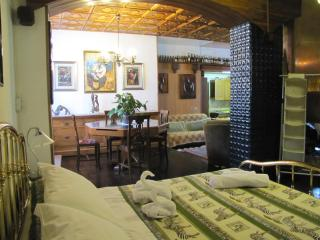 Ethnic open space with big garden - Bormio vacation rentals