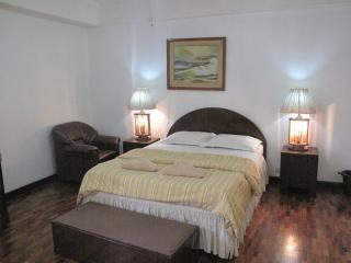 Spacious 1Br. Apartment Makati Aveneu (703) - Makati vacation rentals