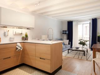 New elegance apartment at BCn center - Barcelona vacation rentals