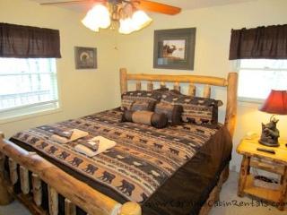 Beech Bear Retreat - Bakersville vacation rentals