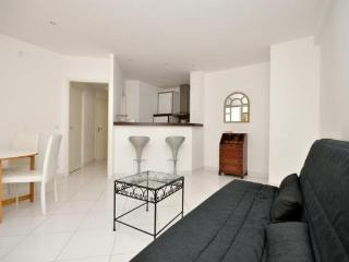 Superb Rental with AC and Balcony, Close to Croisette and Rue d'Antibes - Cannes vacation rentals