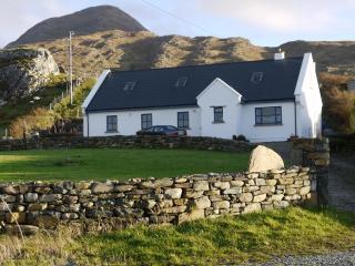 garrat beach  house - Connemara vacation rentals