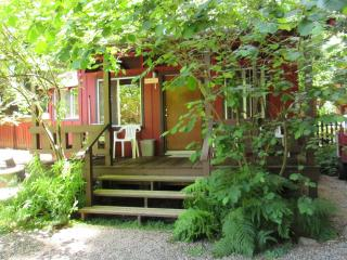 The Hazelnut Studio Cabin with kitchenette in the - Felton vacation rentals