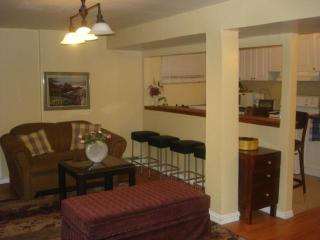 Furnished Homey 2 Br Apt Near Metro,hec,jgh,downtown - Montreal vacation rentals