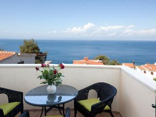 Modern apartment with terrace and sea view in vill - Stomorska vacation rentals