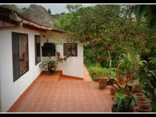 Peaceful Paradise on an ORGANIC FARM - San Miguel de los Bancos vacation rentals