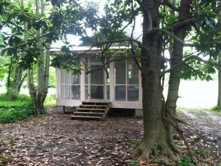 Charming cottage in the Mississippi Delta - Clarksdale vacation rentals