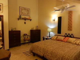 #1 Luxury Penthouse Apartment - Kingston vacation rentals