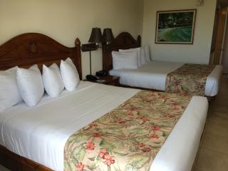 Luxury Waikiki Studio at Luana frm $118 WiFi/Beach - Honolulu vacation rentals