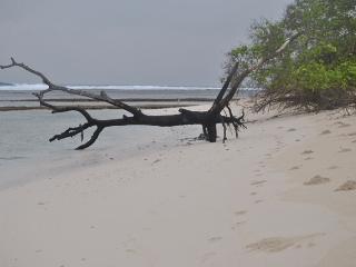 Travel Lodge Surf Break - Maldives vacation rentals