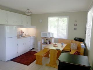 Modern 2 brm. Apartment at Hunter Mountain - Phoenicia vacation rentals