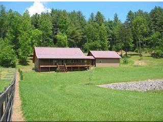 4/2 pet-friendly cabin in North Georgia mountains! - Blairsville vacation rentals