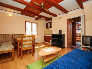 Apartments and Room Andrijana - 80101-A1 - Vrelo Korenicko vacation rentals