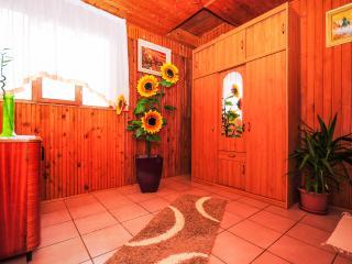 Apartments Ante - 80241-A1 - Central Croatia vacation rentals