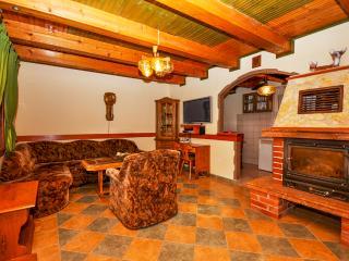 Apartments and Rooms Zdravko - 80731-A1 - Central Croatia vacation rentals