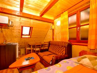 Apartments and Rooms Zdravko - 80731-A3 - Jezerce vacation rentals
