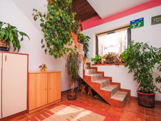 House Marica - 81051-K1 - Central Croatia vacation rentals