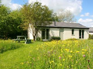 BAILEY POINT COTTAGE, ground floor barn conversion, woodburner, parking, decked area, in Drybrook, Ref 28115 - Drybrook vacation rentals