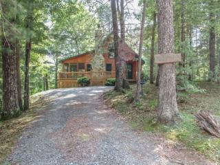 MAJESTIC PINES~2BR~1BA~JACUZZI~WIFI~HOT TUB~SLEEPS 6~WOODBURNING FIREPLACE~SCREENED PORCH~SCREENED PORCH~STONE FIRE PIT!~ONLY $9 - Cherry Log vacation rentals