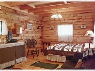 Double D Bed and Breakfast Cabins - Hot Springs vacation rentals