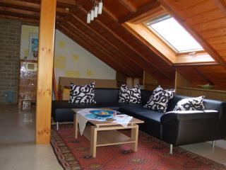 Vacation Apartment in Schlüchtern - 1184 sqft, modern, comfortable (# 200) - Schlüchtern vacation rentals