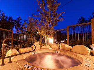 Arrowleaf 2 Ski-In/Ski-Out at Deer Valley Resort with Two Communal Hot Tubs - Park City vacation rentals