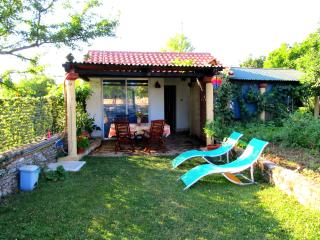 Superb value Holiday Apartment in the Heart of Istria - Kanfanar vacation rentals