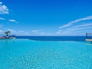 Waterfront La Dacha Villa - Cliffside  - Infinity Pool, Gardens, Gym - Terres Basses vacation rentals