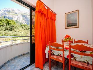 Apartment and Rooms Ivan - 45191-A18 - Central Dalmatia vacation rentals