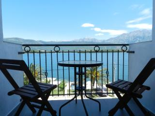 Apartments Slobodanka - 93021-A1 - Kotor vacation rentals