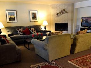 1167C Herbert - Lake Tahoe vacation rentals
