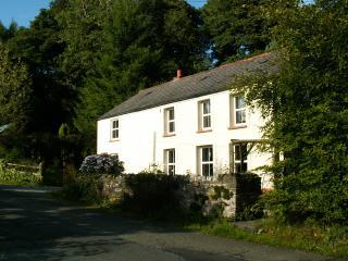 Bryn Marlais Cottage - Brechfa vacation rentals