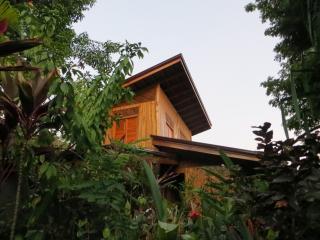 Casa Hermosa Surf Lodge - Santa Teresa vacation rentals