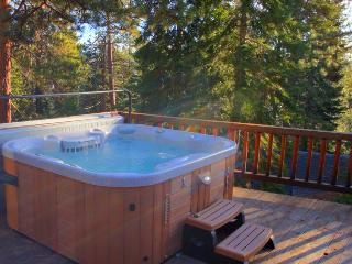 Awesome location, lakeview private hot tub, HOA beach! - Carnelian Bay vacation rentals